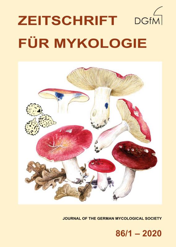 Z-Mykol-086-1-2020-Titelbild-Russula-tinctipes.jpg